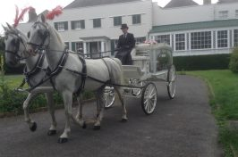 horse and cart funeral procession