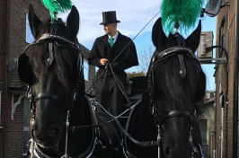 funeral procession with horses